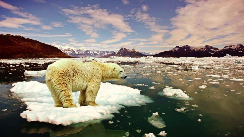 Los costos del calentamiento global