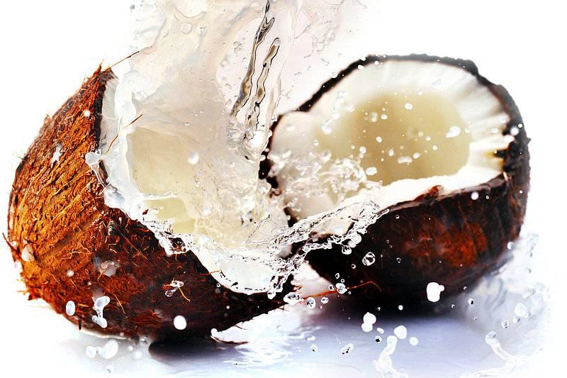 Beneficios del coco — El Árbol de la vida