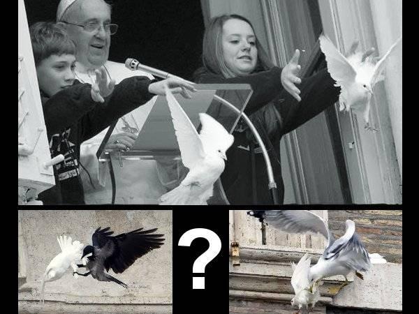 Ataque a las palomas del Papa y las Profecías