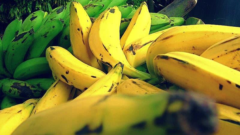 Beneficios del plátano para tu salud