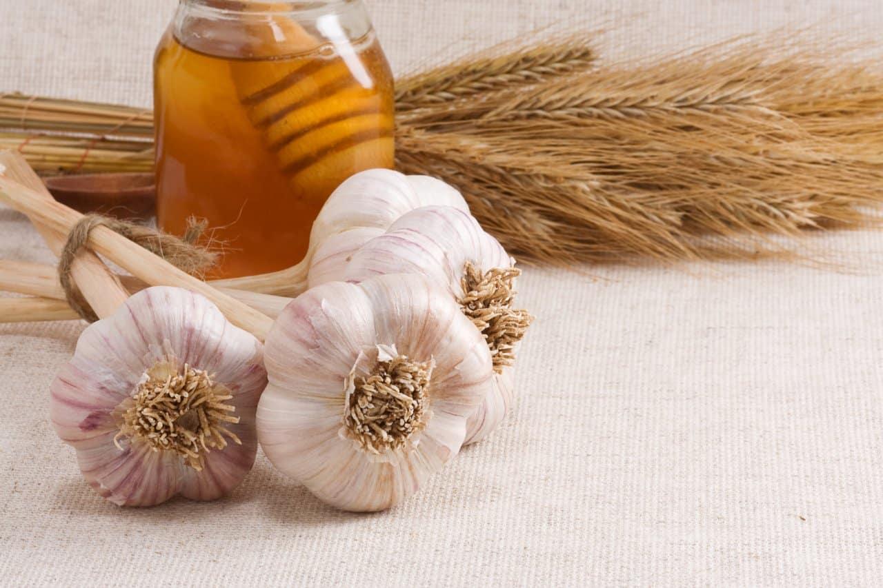 Miel Poderoso Antibiótico Natural
