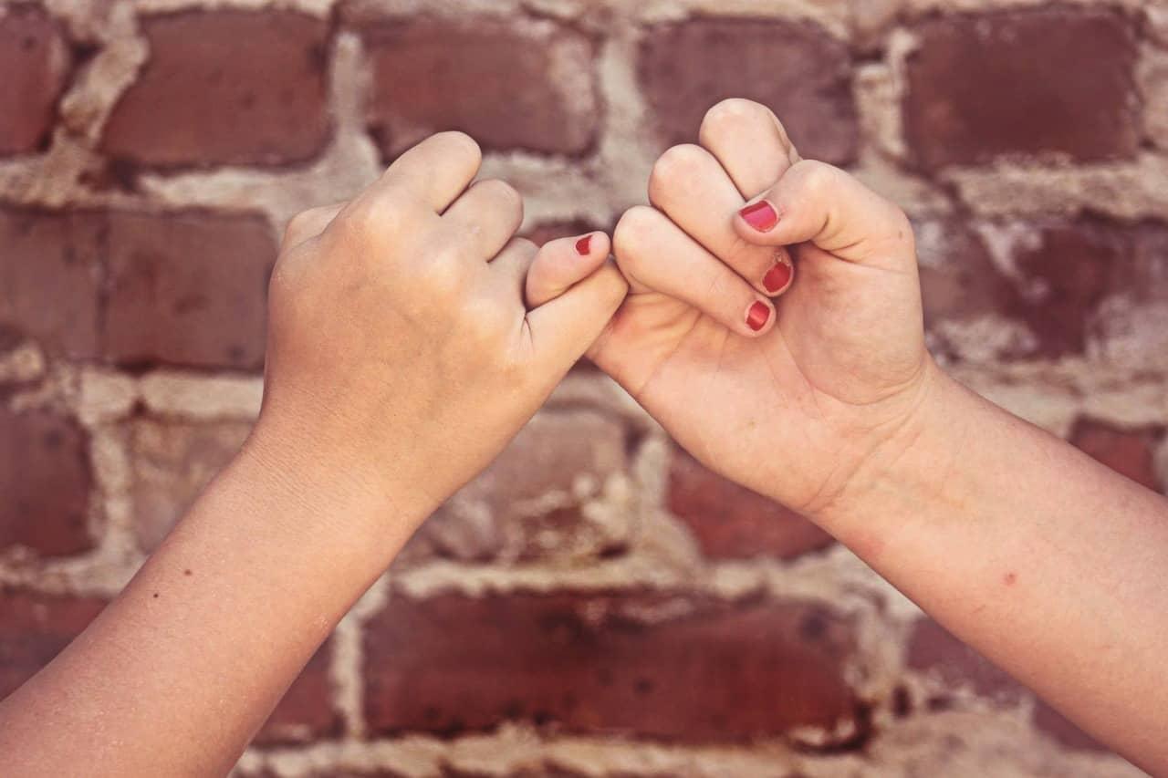 Claves para identificar los falsos amigos