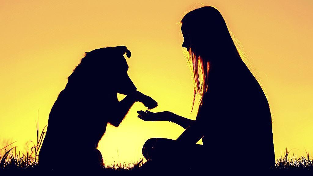 ¿Eres realmente una persona compasiva?
