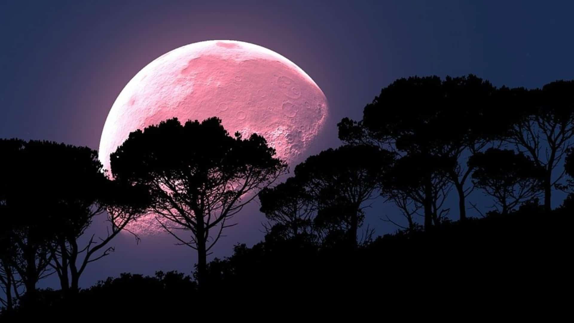 Luna de la Fresa o Luna de Miel