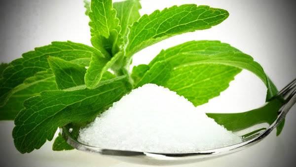 propiedades stevia