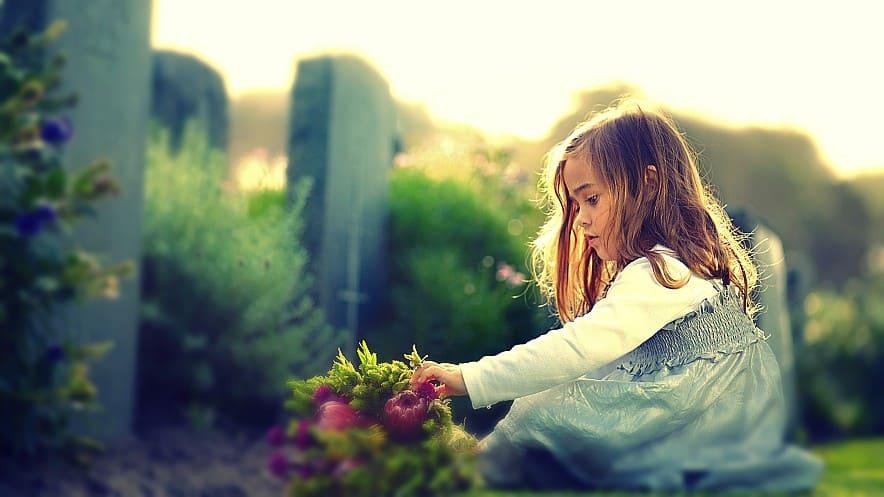 Las ruedas del alma o reencarnación