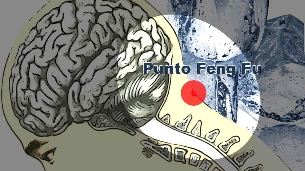 Terapia con cubo de hielo — Punto Feng Fu