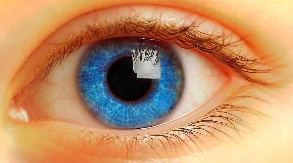 Tus pupilas revela lo que piensas