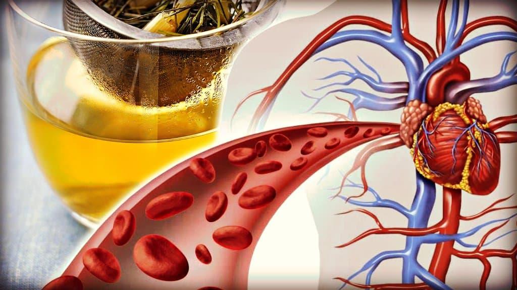 Remedios naturales para combatir la mala circulación sanguínea