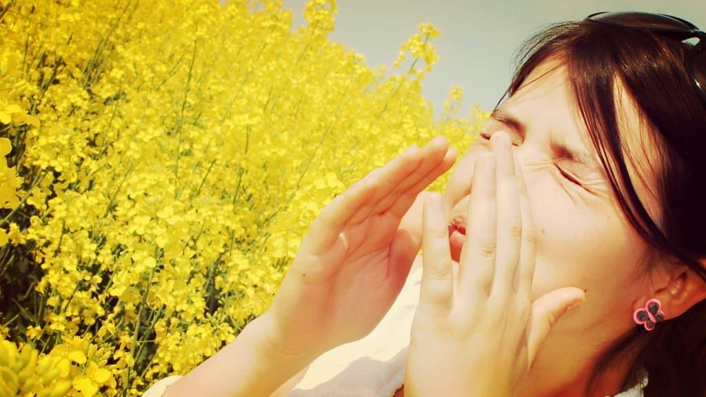 Remedios naturales para las alergias de primavera