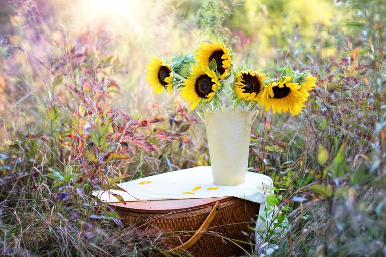 Rituales mágicos de primavera – Energía y buena fe