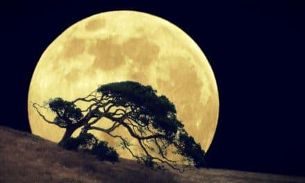 16 de Septiembre Eclipse Lunar penumbral en el eje Virgo