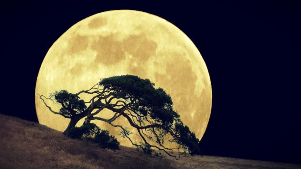 16 de Septiembre Eclipse Lunar