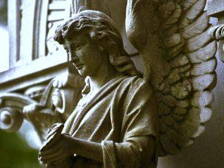 Angel 35 Chavakhiah
