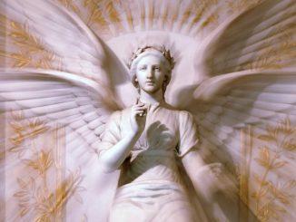 Angel 41 Hahahel