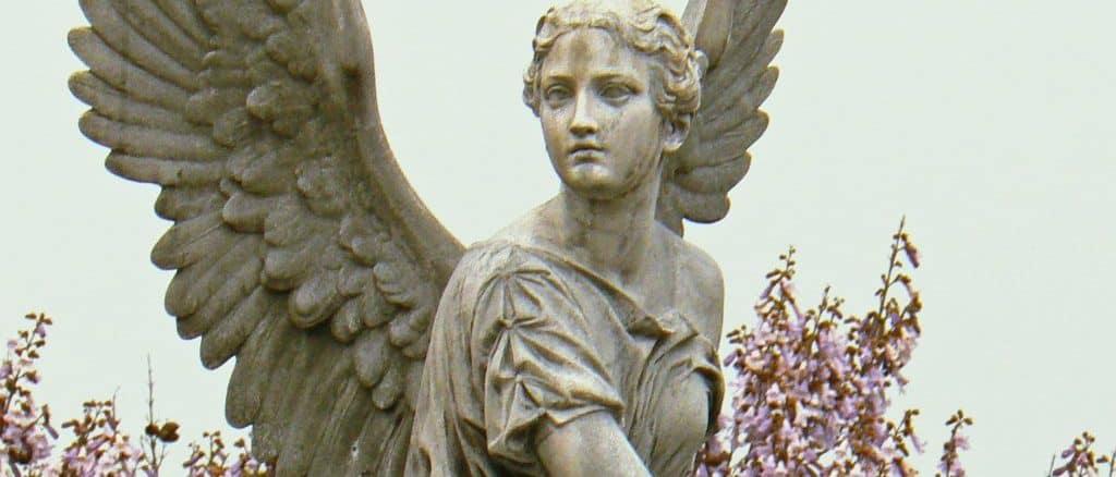 Angel 29 Reiyel