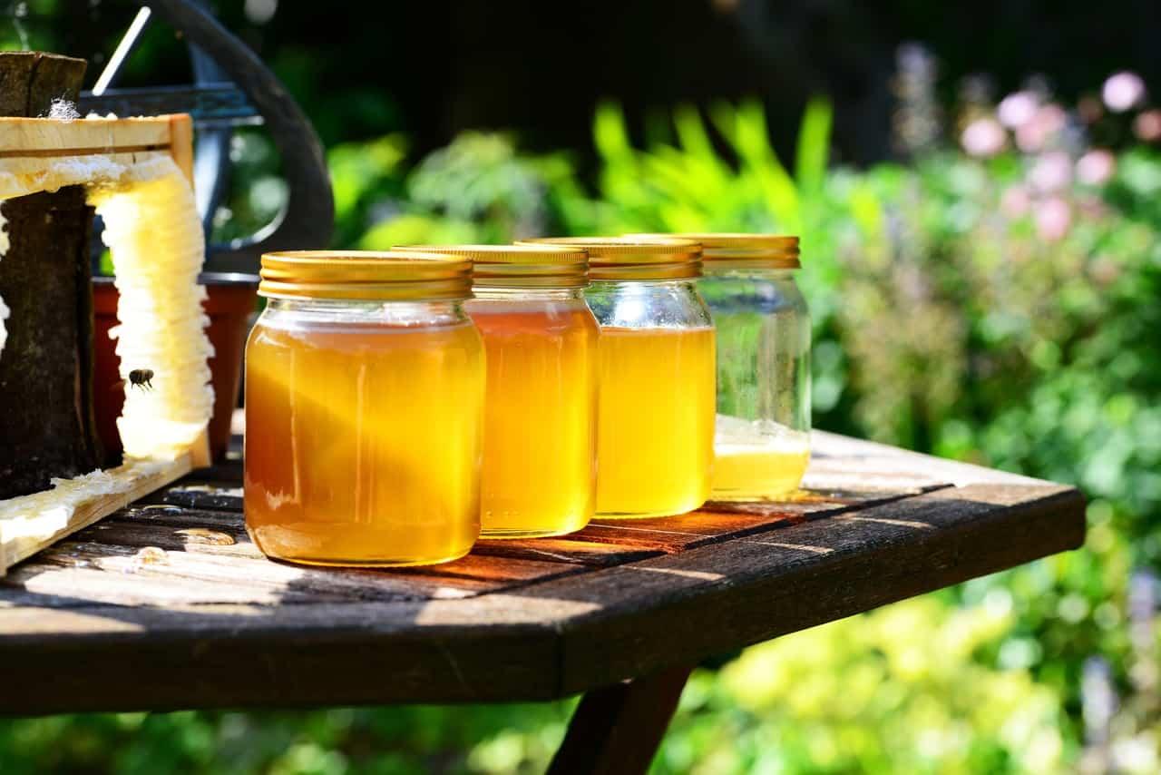 ¿Cómo saber si la miel es pura o adulterada?