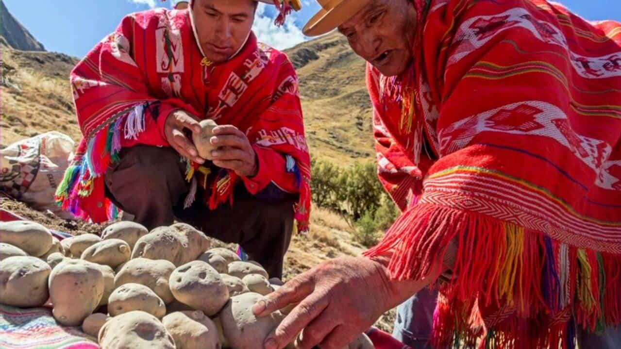 Una práctica ancestral para nunca pasar hambre