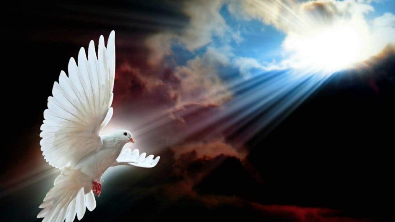 ¿Por qué se representa con una paloma el Espíritu Santo?