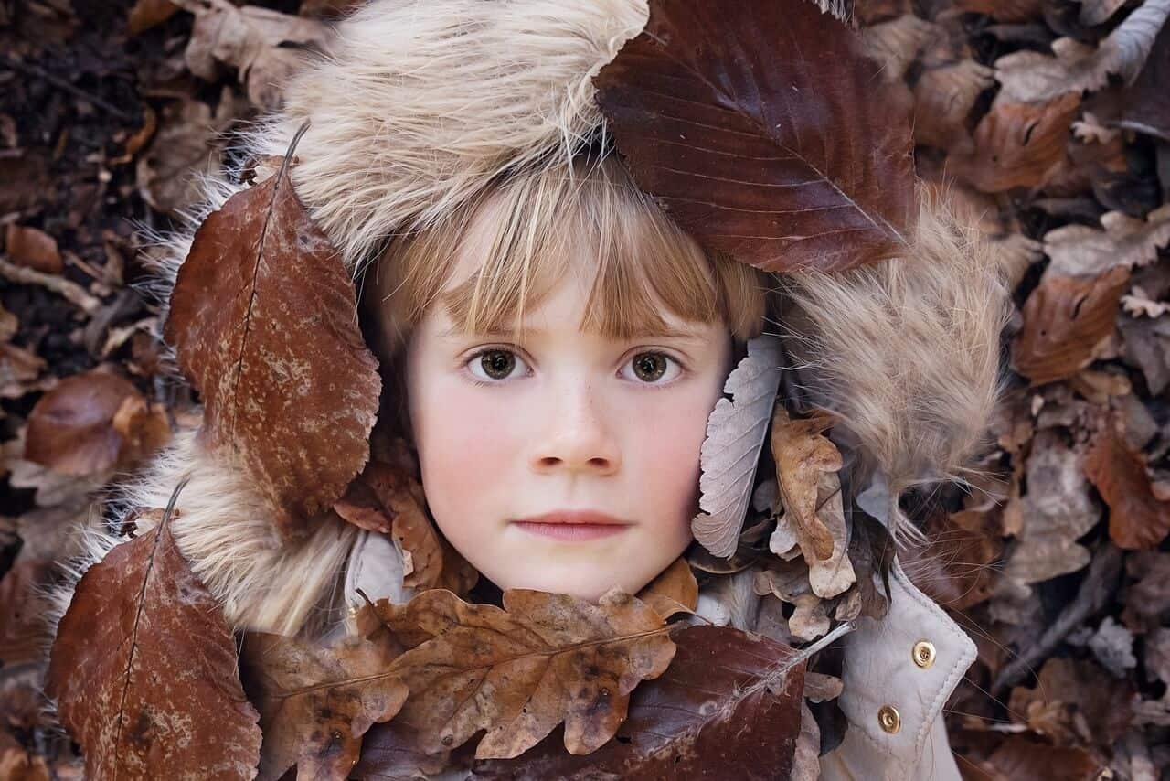 Sol en Libra, nuestro otoño interno