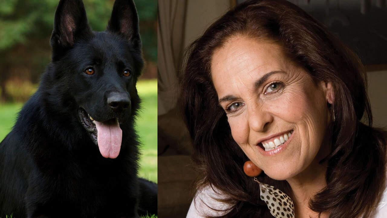 Predicciones Ángeles Lasso – Libro Horóscopo Chino 2018 Año del Perro