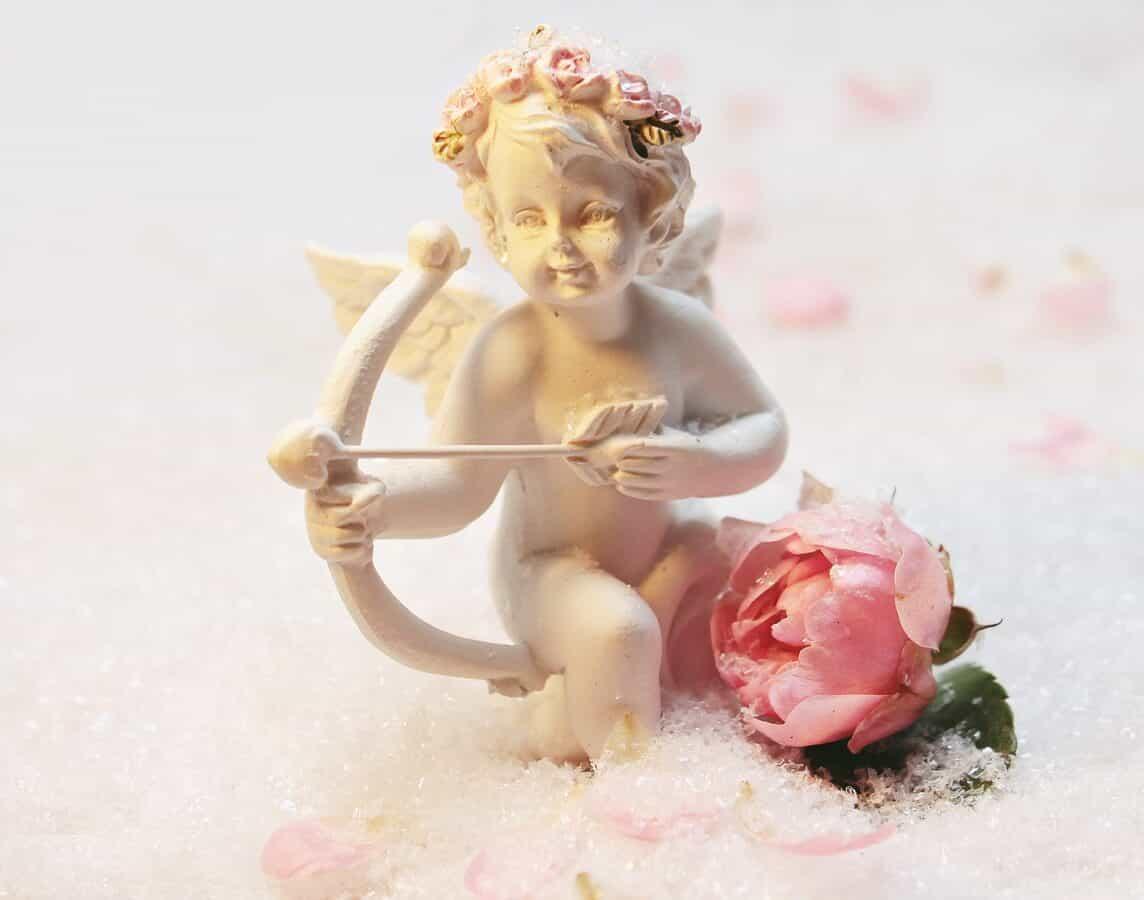 Rosas en San Valentín – Significado y Simbolismo