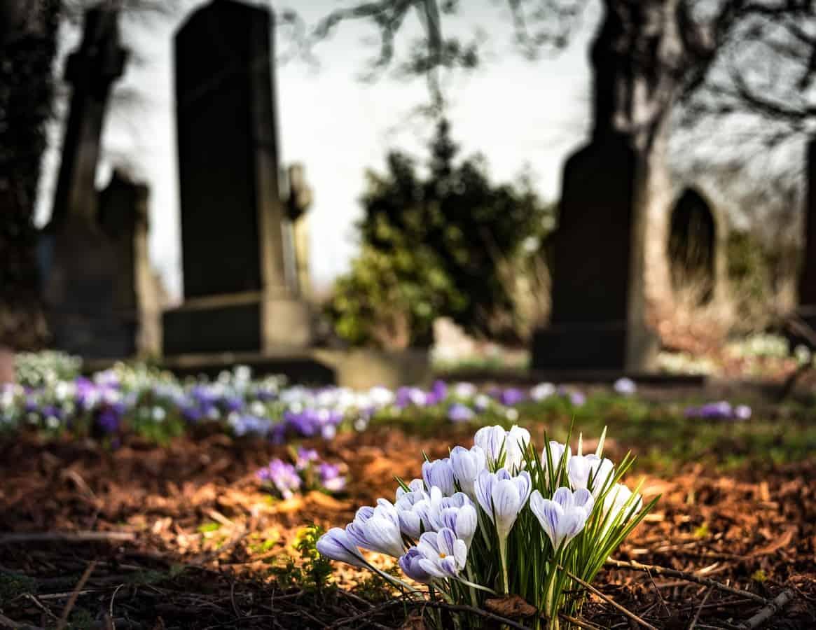 La conciencia perdura más allá de la tumba
