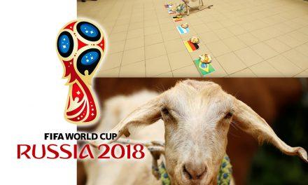 Cabra Zabiyaka y sus predicciones Mundial Rusia 2018