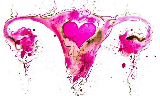 Biodescodificación del útero – Conflictos emocionales que los afectan