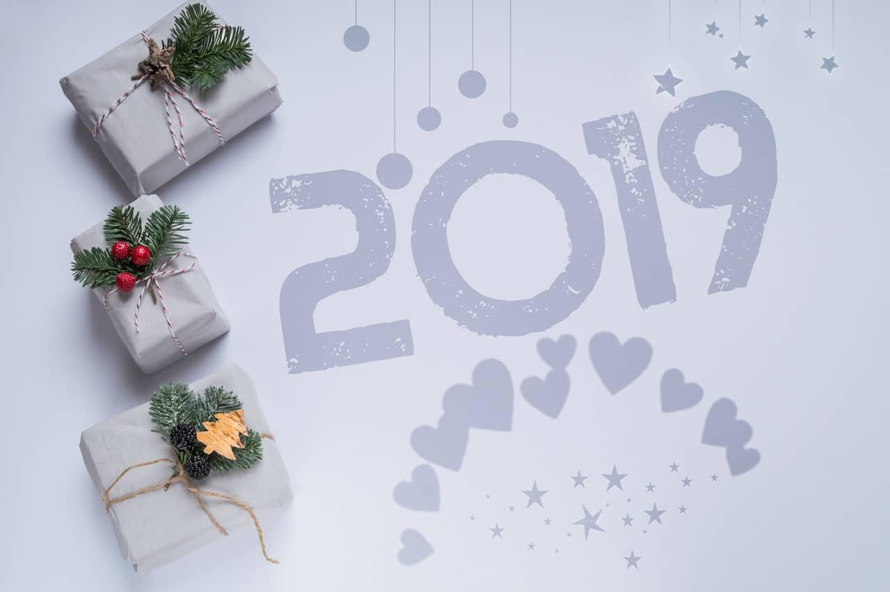 Energía Enero 2019 – Año De Comienzos