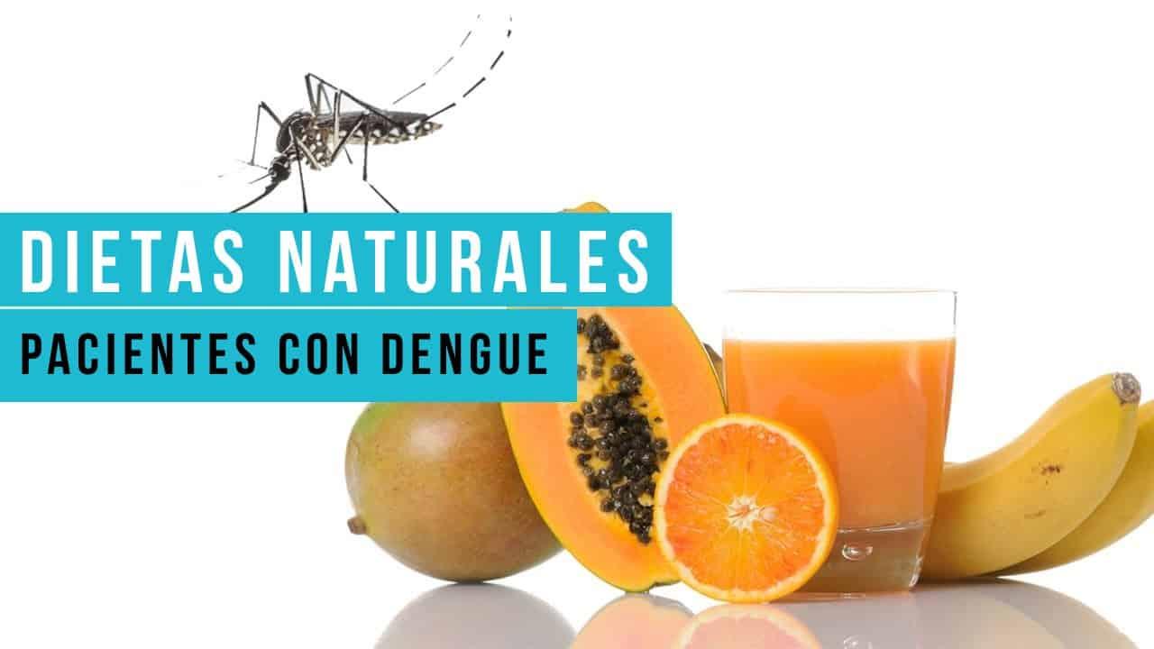 Dietas Naturales para los pacientes con dengue