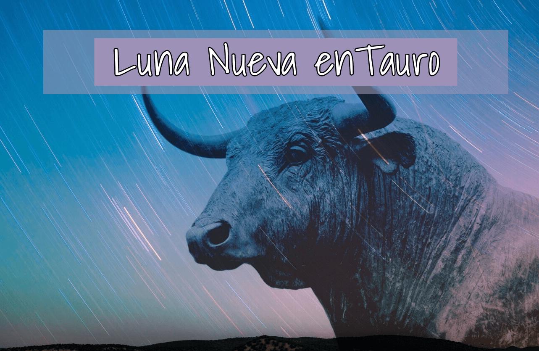 Luna Nueva en Tauro 3 y 4 de Mayo 2019