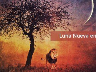 Luna Nueva en Leo en Conjunción a Venus