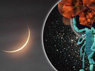 Luna Nueva e inicio de Mercurio Retrógrado