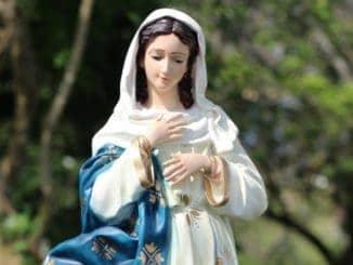 Inmaculada Concepción de María Santísima