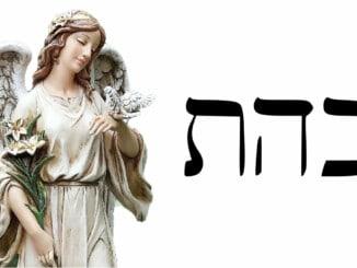 Ángel 8 Cahetel