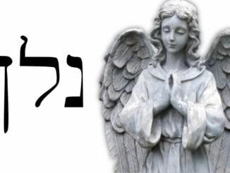 Ángel 21 Nelkhael