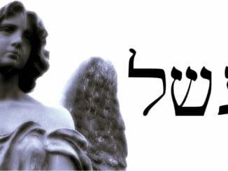Angel 47 Asaliah