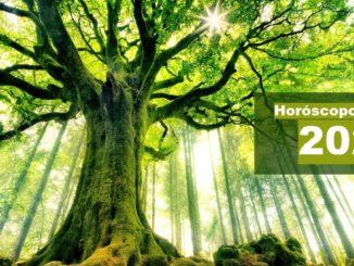 Horóscopo Celta 2021